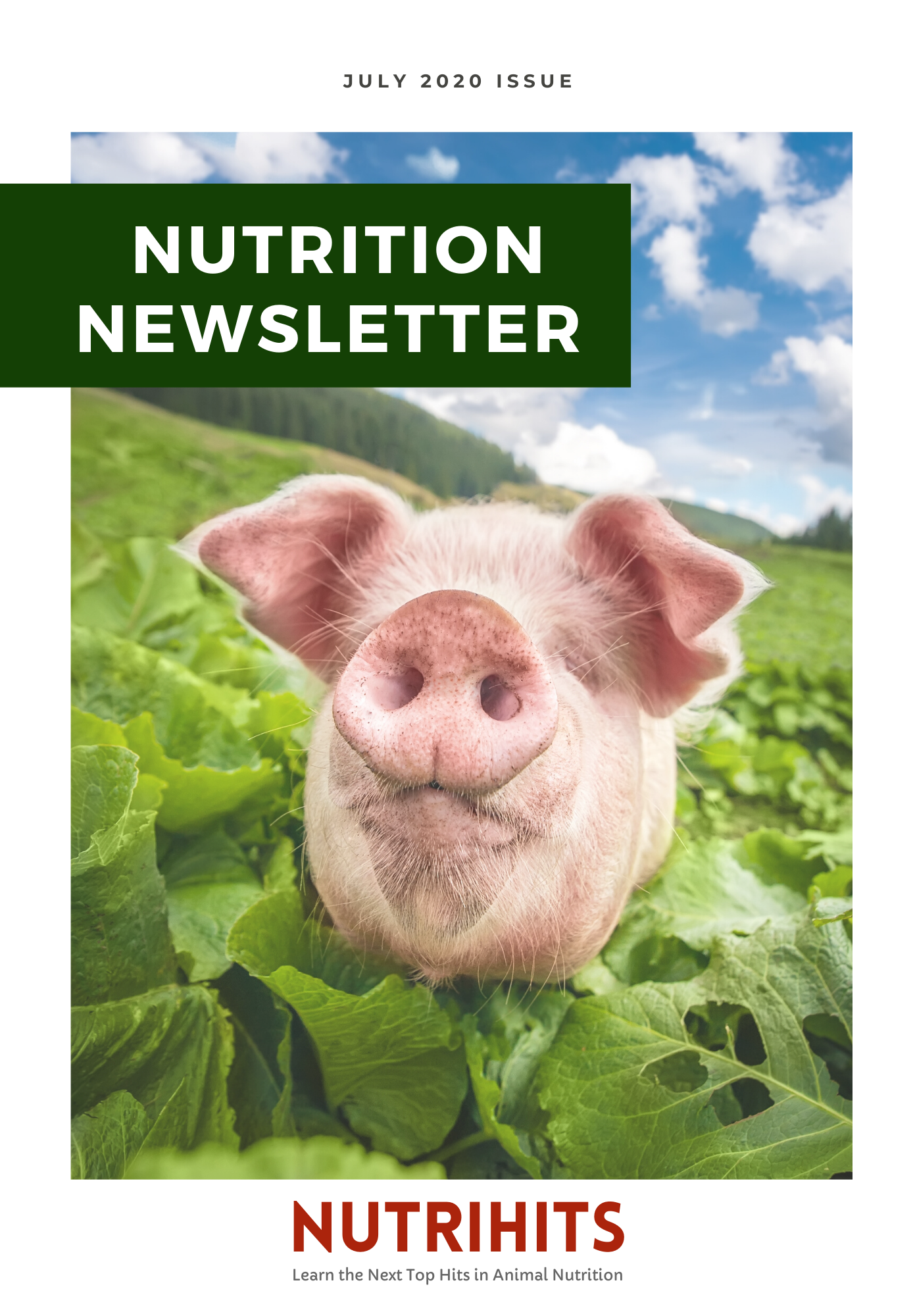 Nutrition Newsletter - July